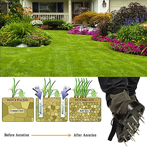 MoYag Lawn Aerator Shoes, Universal Size,Adjustable Straps,4 Aluminum Alloy Buckles Spiked Aerating Lawn Sandals, 26 Nails Aerating Your Lawn Yard by MoYag (Image #6)