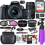 Canon EOS Rebel SL2 24.2MP DSLR Camera with Canon 18-55mm STM Lens & Canon EF 75-300mm III Lens Bundle + 32GB SD Memory + HD Filters + Spider Tripod + Professional Bundle with Corel Software Kit