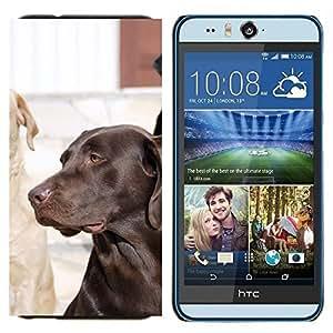 YiPhone /// Prima de resorte delgada de la cubierta del caso de Shell Armor - Perro del labrador retriever Laboratorio Negro - HTC Desire Eye M910x