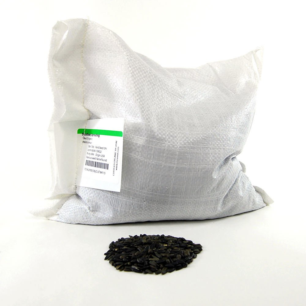 Whole Sunflower Sprouting Seeds: 25 Lb - Bulk, Black Oil Sun Flower Seeds (Shell On): Micro Greens, Gardening
