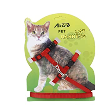 Ajustable Correa Cuerda Arnes Collar Para Mascota Gatos Seguridad Nylon: Amazon.es: Deportes y aire libre