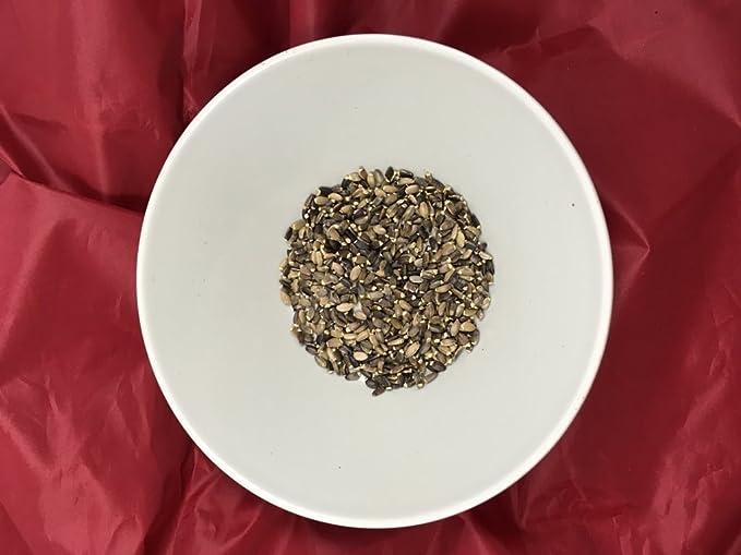 Cardo Mariano semillas a granel - 100 grs: Amazon.es: Alimentación ...
