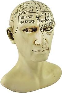 Things2Die4 Creepy Cast Resin Phrenology Head Victorian Steampunk