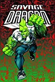 Savage Dragon Archives Volume 4 (v. 4)