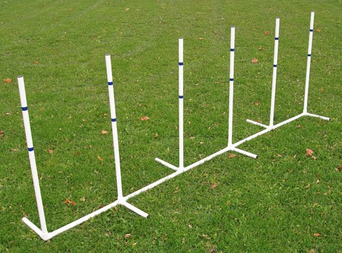 Weave Poles - Affordable Agility Fixed 6 Pole Weave Set