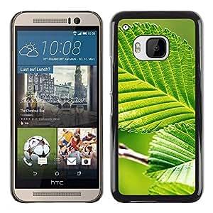 Paccase / SLIM PC / Aliminium Casa Carcasa Funda Case Cover para - Green Leaf Nature Sun - HTC One M9