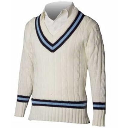 fd3843a8fd01 Amazon.com: Cricket V-Neck Sweater Navy/Sky: Clothing