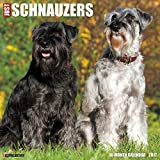 Just Schnauzers 2017 Wall Calendar (Dog Breed Calendars)