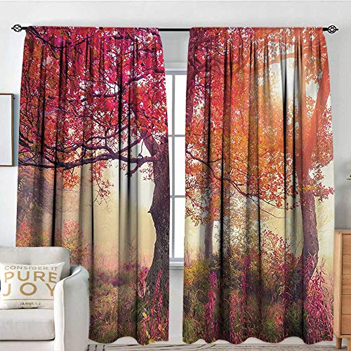 Blackout Curtains for Bedroom/Living Room Forest,Magical View in The Foggy Forest with Hazy Fairy Sun Beams and Fall Leaves Picture,Red Brown,Insulated Draperies for Office Nursery 60