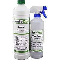 BactoDes Animal | Tier-Geruchsentferner | Effektiver Geruchskiller | Katzenurin