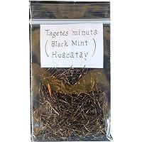 Semillas de Huacatay 150 Semillas de Tagetes Minuta Planta Silvestre