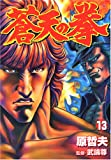 Fist of the Blue Sky (13) (Bunch comics) (2005) ISBN: 4107712257 [Japanese Import]