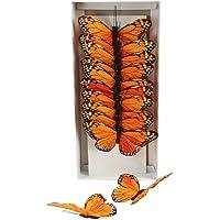"Shinoda Design Center 0165500217 5"" Orange Faux Monarch Butterfly Set, 12 Piece"