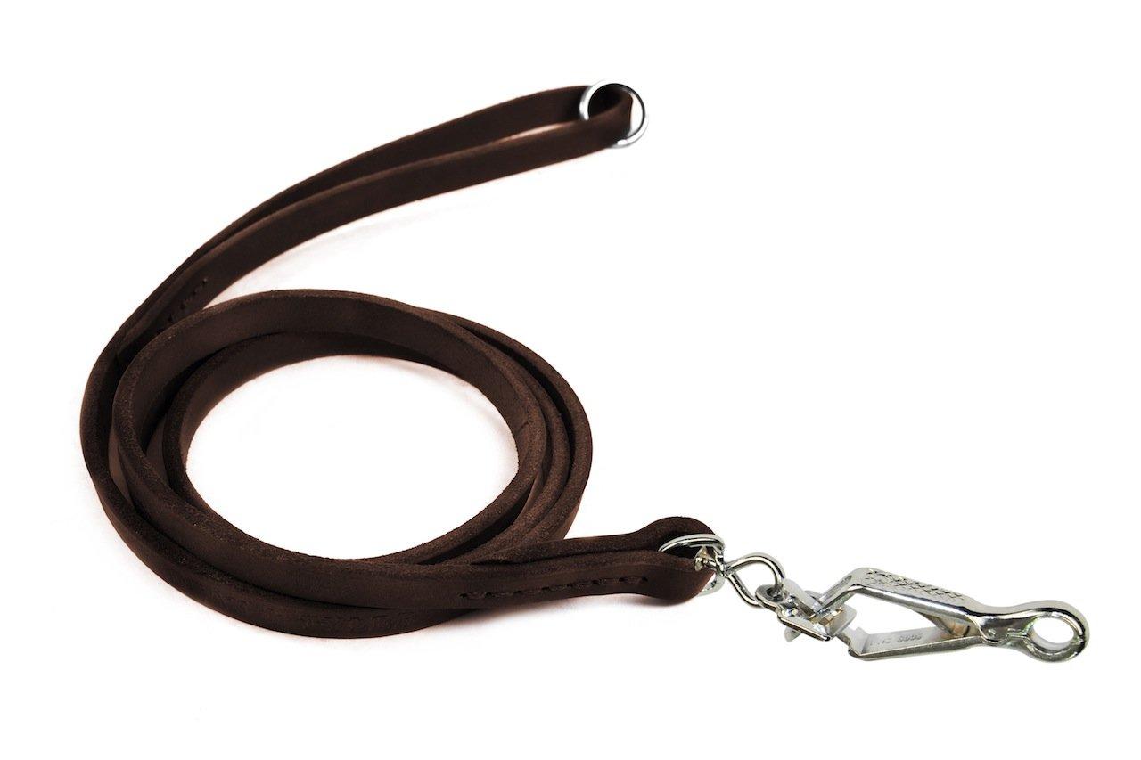 tutti i prodotti ottengono fino al 34% di sconto Dean & Tyler No Nonsense Dog guinzaglio con Anello Anello Anello in Acciaio Inox su Manico Marronee e Herm Sprenger Snap Hook, 2-Feet da 1 5,1 cm  80% di sconto