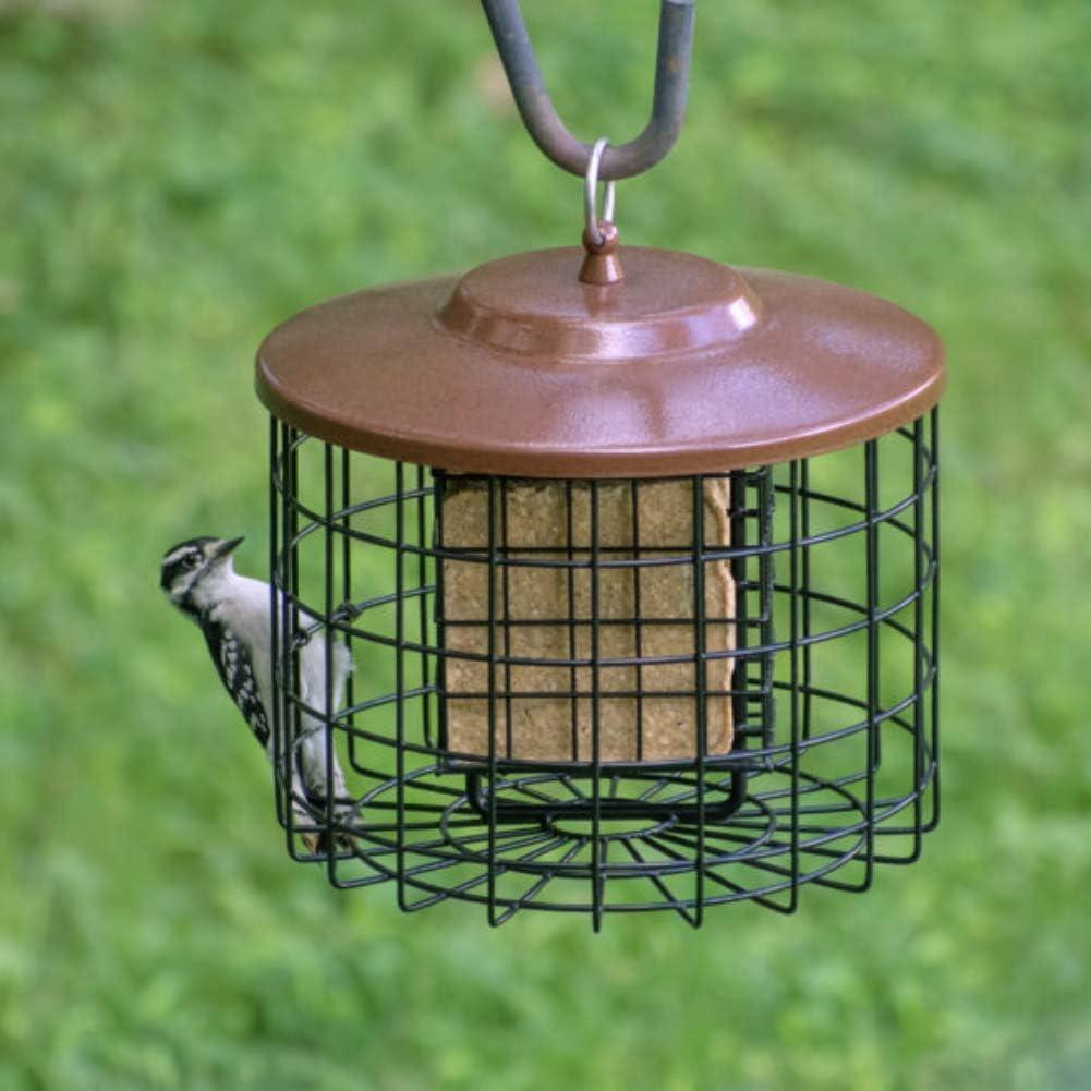 Los mejores comederos para pájaros de exterior de 2020 (análisis) 5