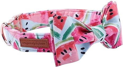 Collar de jalea para mascotas con cuello de mascota de color rosa ...
