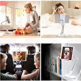 """Walkas Tablet Computer/Cell Phone Universal Mount Stand with Suction Cup Base - Up to 10""""(White)"""