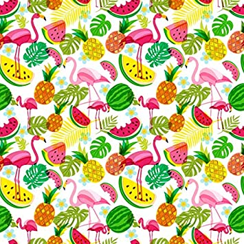Baocicco 8x12ft Watermelon Backdrop Pieces of Watermelon Pattern Photography Background Watermelon Theme Birthday Party Decoration Summer Holiday for Children Fruit Party for Kids Photo Booth Prop