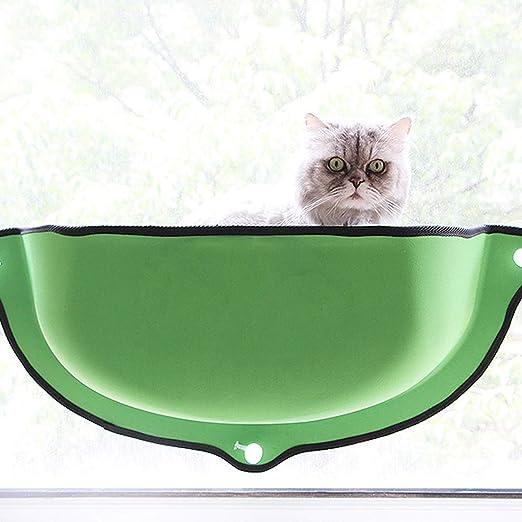 Amazon.com: Zhyaj - Cama de ventana para gato o gato, con ...