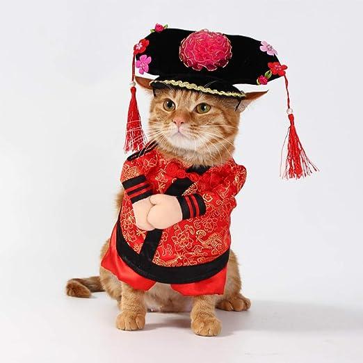 L Pet supplies Ropa para Mascotas Ropa para Gatos Traje de Tang Emperador Emperador Gege Vestido Recto Transformación Teddy Dog Clothes Funny @ Grid_No. 2 (S): Amazon.es: Productos para mascotas