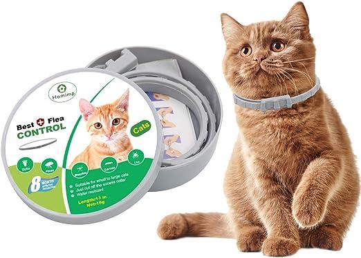 HOMIMP - Collar de pulgas para Gatos, 8 Meses de protección ...