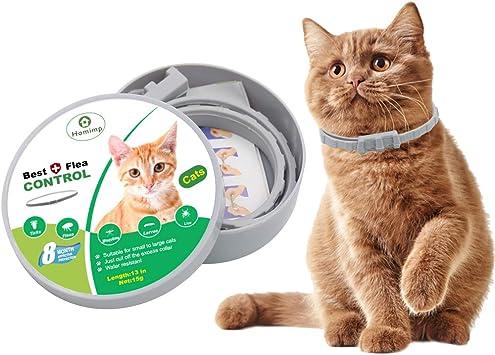 Homimp Cat Flea Collar 8 Months Protection Flea Tick Treatment For Cats Kittens Puppies 33cm Amazon Co Uk Pet Supplies