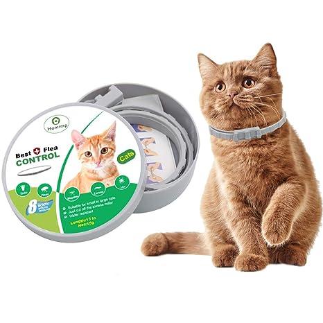 HOMIMP - Collar de pulgas para Gatos, 8 Meses de protección, Tratamiento de pulgas