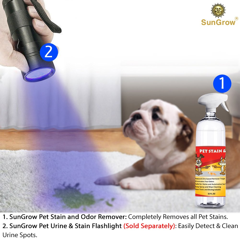 SunGrow Advanced Pet Urine Stain and Odor Remover for Dogs & Cats Owners: Clear, Clean, Enzyme Blend with a Pleasant Green Tea Scent : Color Safe & Effective for Clothing, Rugs, Counter-Tops & Floors