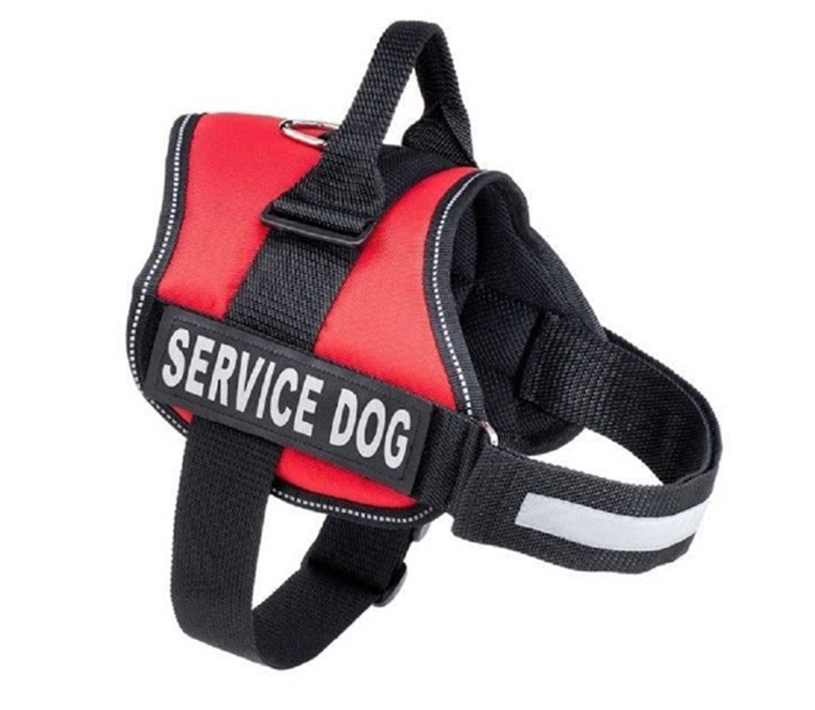 safety harness petco petco safety vest elsavadorla. Black Bedroom Furniture Sets. Home Design Ideas
