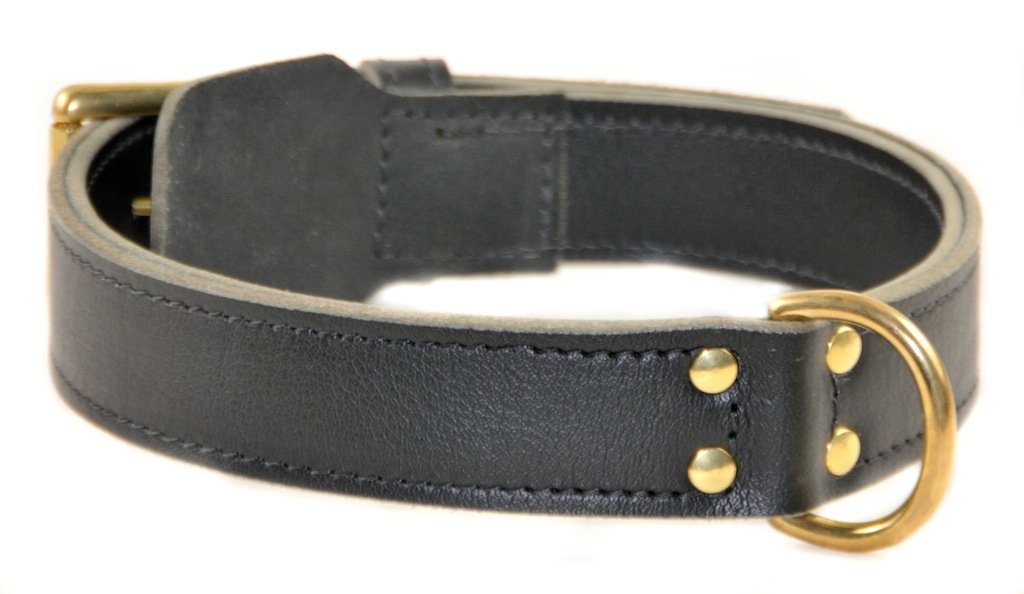 Dean and Tyler  SIMPLICITY  Dog Collar Solid Brass Hardware Black Size 40  x 1 3 4  Width. Fits neck size 38 Inches to 42 Inches.