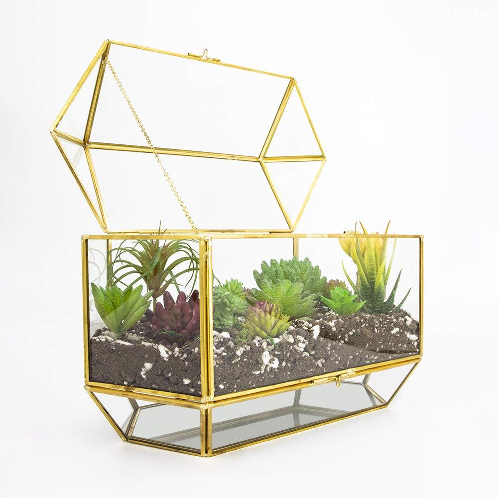 Ferrisland Large Gold Glass Terrarium, Decorative Jewelry Display Case Box – 7.3 x13 x9.1