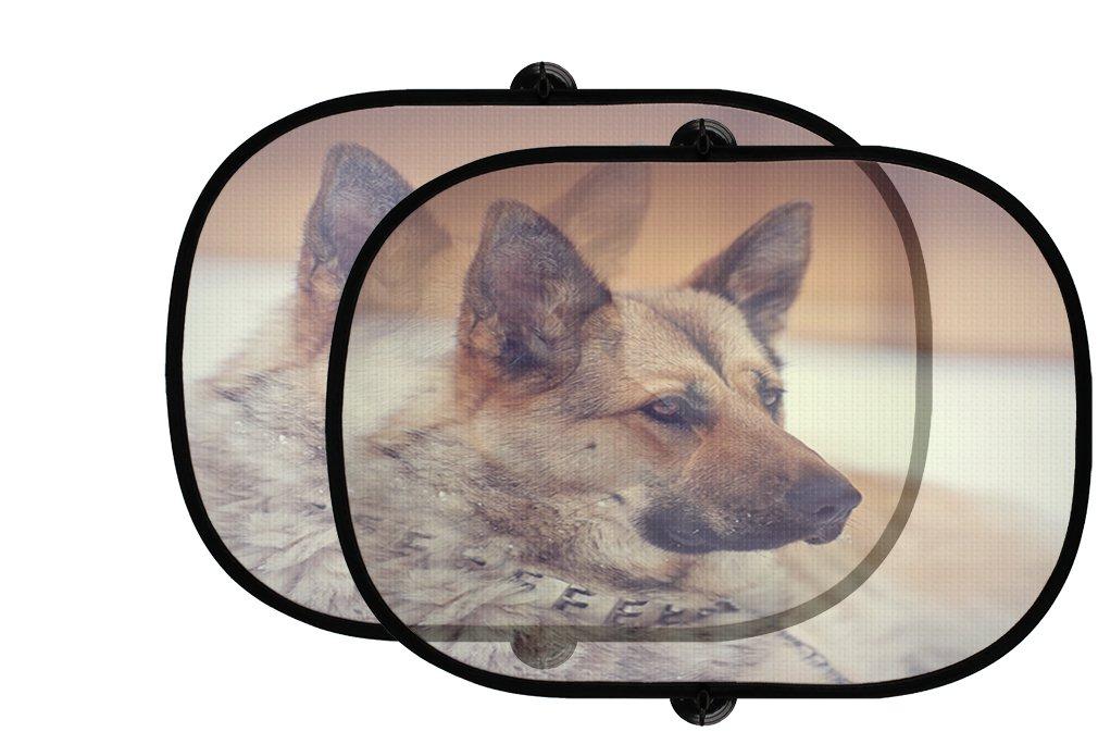 Style in Print Portrait Of Dog Of Breed Sheep Dog 2Pcs Foldable Auto Window Sunshade Mesh