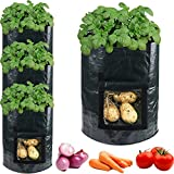 accmor 4 Pack 10 Gallon Garden Potato Grow Bags Planter Bag, Heavy Duty & Durable Bags with Flap and Handles Aeration Fabric Pots Heavy Duty for Grow Vegetables: Potato, Carrot, Tomato, Onion