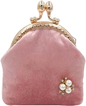 Amazon.com: Women Buckle Coin Purse Small Wallet Elegant Clutch Pouch, Pink  Velvet: Office Products