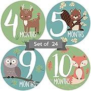 Baby Monthly Stickers | Gender Neutral Baby Milestone Stickers | Woodland Animal Newborn Stickers | Unisex Stickers for Baby | Baby Girl or Boy Stickers | Newborn Milestone Month Stickers (Set of 24)