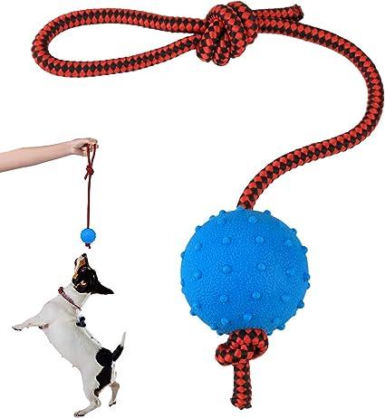 MCYYY Pelota de Perro Indestructible Juguete de Entrenamiento para Perros Mascotas Cachorro de tirón Bolas Juguetes Juguetes para Masticar Mascotas Bolas de Goma Maciza de pequeño tamaño con Cuerda: Amazon.es: Productos para