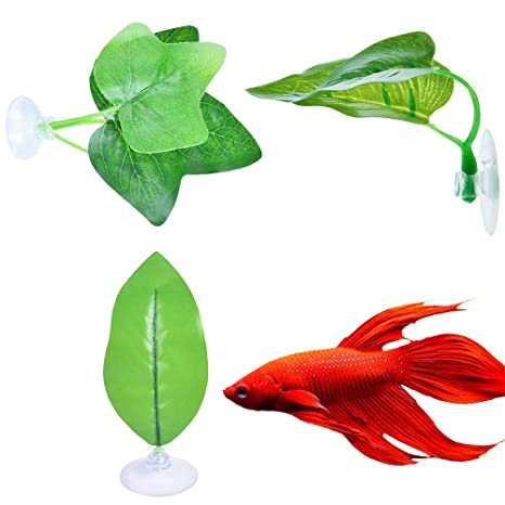Urijk Betta Almohadilla de Hojas de pez, Hamaca de plástico para ...