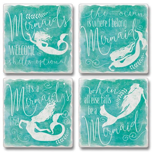 Set of 4 Absorbent Stone Coasters - When
