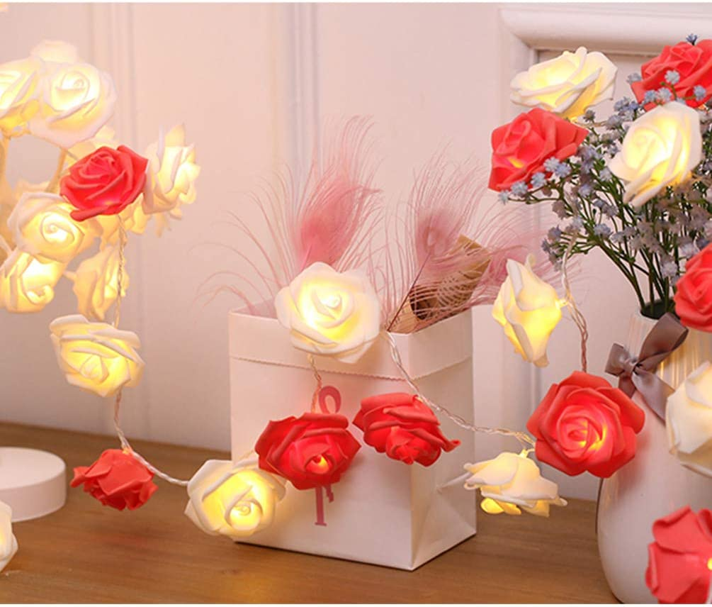 Amazon Com Indoor String Red Rose Lights 20 Led Battery Operated Flower Hanging Lights For Valentine S Day Wedding Anniversary Spring Party Decorations Teen Girls Bedroom Decor Gift Idea Red White Home Improvement