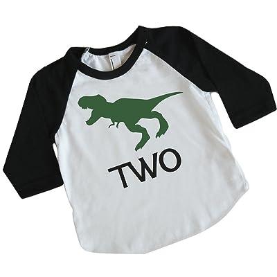 Dinosaur Birthday Shirt Boy 2nd Outfit Dino