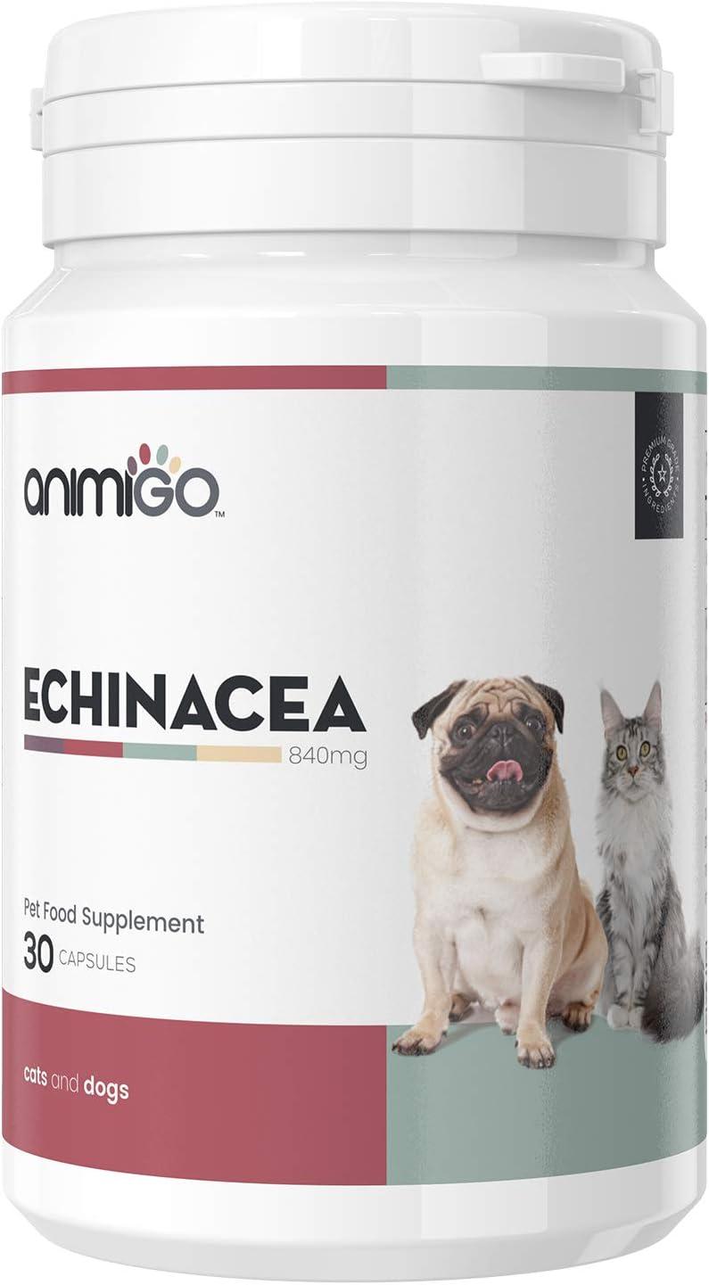 Animigo Equinácea para Perros y Gatos | Suplemento Natural Inmunológico para Mascotas | Mantiene, Refuerza y Protege Las Defensas | Ideal para Resfriados, Tos, Fiebre y Más | 30 Cápsulas de 840 MG