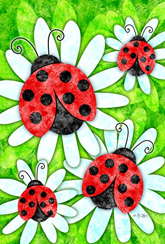 Red Ladybug House - Toland Home Garden 1010284 Ladybugs and Daisies 28 x 40 Inch Decorative, House Flag- 28