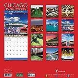 2016 Chicago Sports Venues Wall Calendar