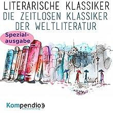 Literarische Klassiker: Die zeitlosen Klassiker der Weltliteratur (Spezialausgabe) Hörbuch von Alessandro Dallmann Gesprochen von: Michael Freio Haas