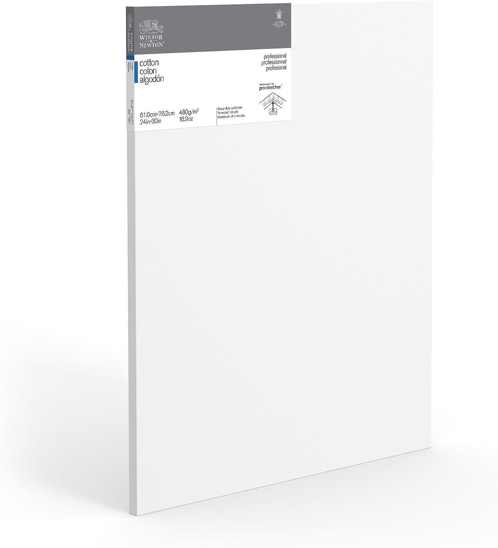 Winsor /& Newton Professional cotone tradizionale tela 8 x 10 Inches