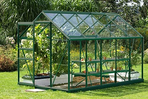 Vitavia - Invernadero Venus 6200 ESG (3 mm, 6, 2 m²), color verde oscuro: Amazon.es: Jardín