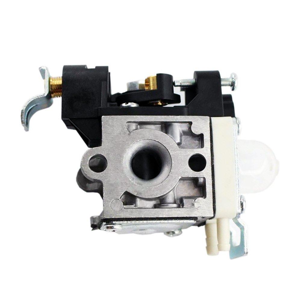 QAZAKY Carburador para Zama RB-K106 Echo PB-250 PB-250LN ES-250 A021003660 Carburador