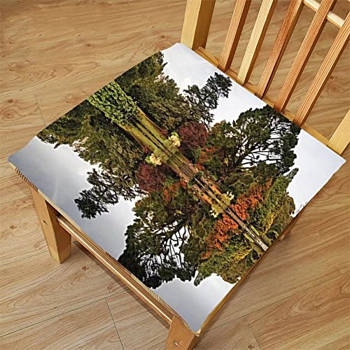 Nalahome Set of 2 Waterproof Cozy Seat Protector Cushion Cottage Decor Collection Lush Autumn Forest Consist of Different Kind of Trees Reflecting to a Lake Picture Olive Gree Printing Size - Apps Pictures Reflecting For