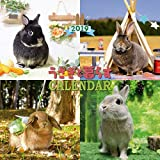 うさぎと暮らすカレンダー2019 (壁掛け)