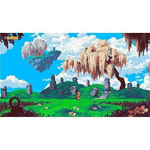61JROrymIOL - Owlboy Standard Edition - PlayStation 4
